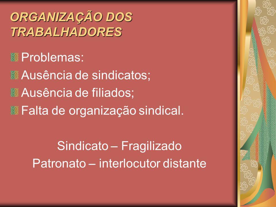 ORGANIZAÇÃO DOS TRABALHADORES Problemas: Ausência de sindicatos; Ausência de filiados; Falta de organização sindical. Sindicato – Fragilizado Patronat