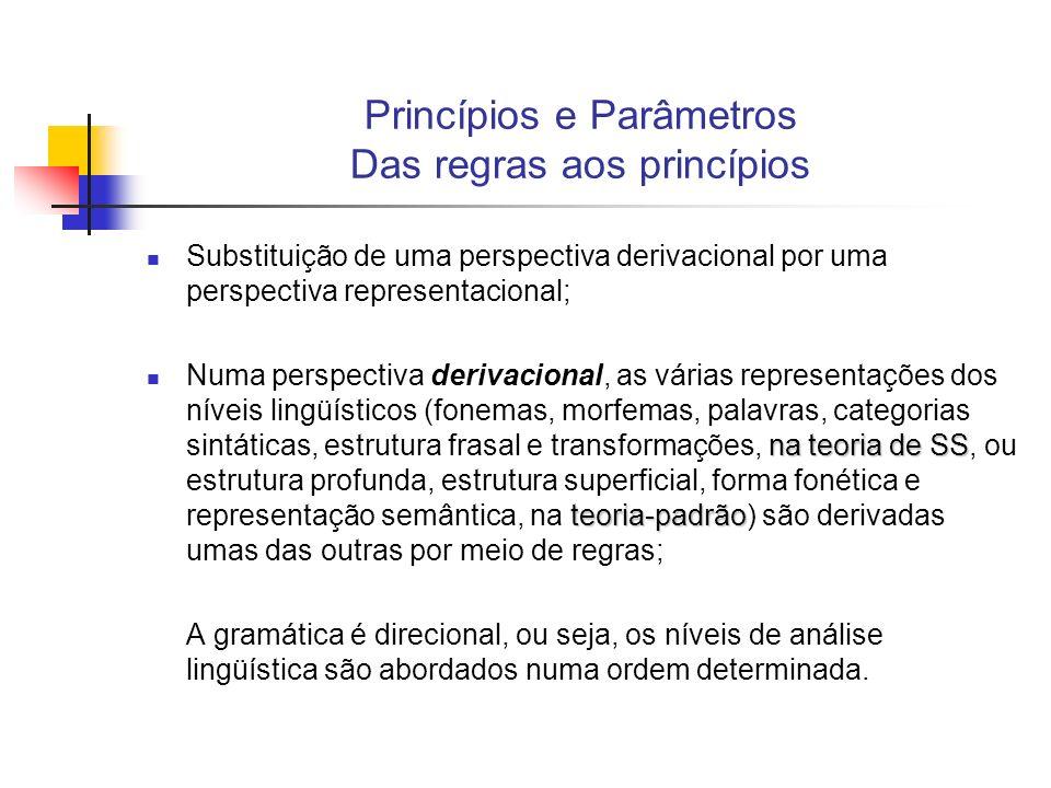 Princípios e Parâmetros Das regras aos princípios Na perspectiva representacional, as representações não se relacionam por derivação, mas são apenas representações de propriedades estruturais resultantes das teorias que restringem a gramática.
