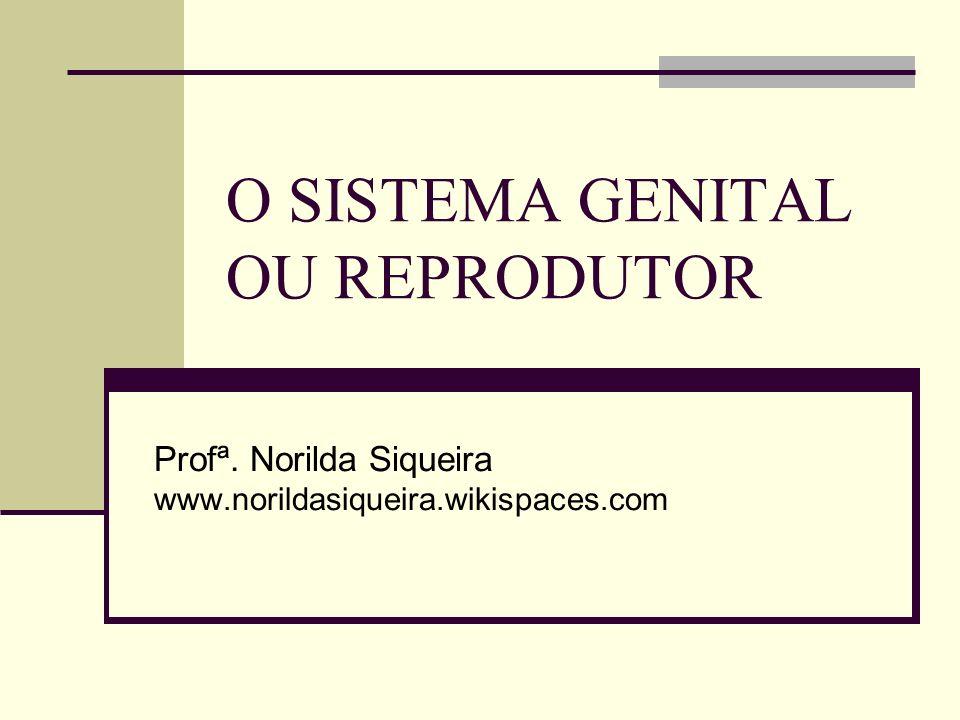O SISTEMA GENITAL OU REPRODUTOR Profª. Norilda Siqueira www.norildasiqueira.wikispaces.com