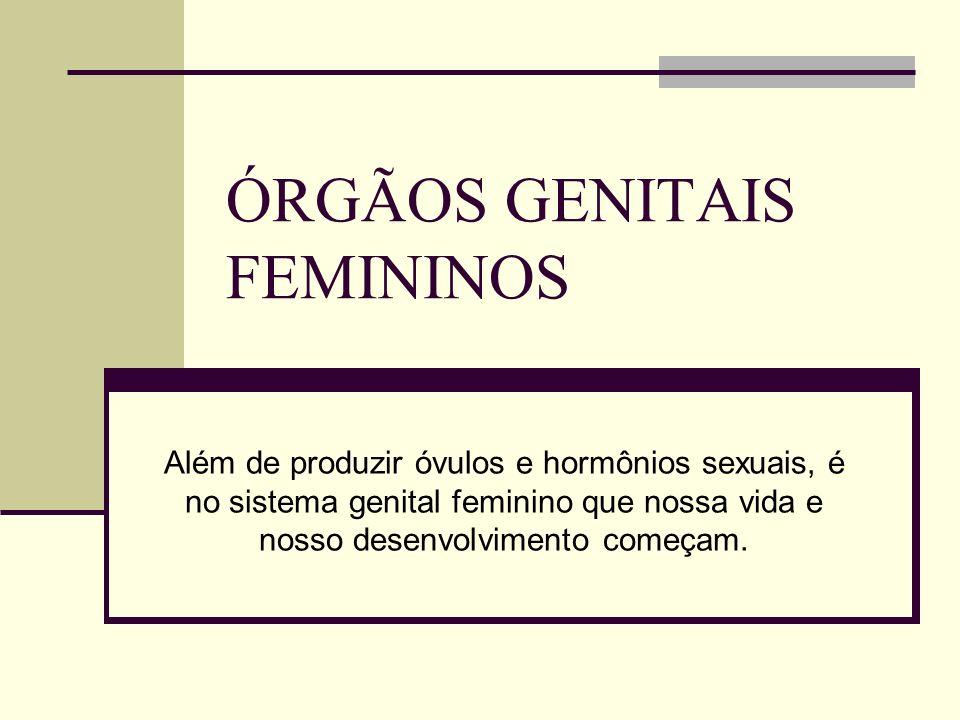 ÓRGÃOS GENITAIS FEMININOS Além de produzir óvulos e hormônios sexuais, é no sistema genital feminino que nossa vida e nosso desenvolvimento começam.