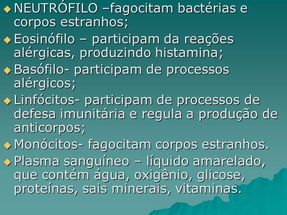 NEUTRÓFILO –fagocitam bactérias e corpos estranhos; NEUTRÓFILO –fagocitam bactérias e corpos estranhos; Eosinófilo – participam da reações alérgicas, produzindo histamina; Eosinófilo – participam da reações alérgicas, produzindo histamina; Basófilo- participam de processos alérgicos; Basófilo- participam de processos alérgicos; Linfócitos- participam de processos de defesa imunitária e regula a produção de anticorpos; Linfócitos- participam de processos de defesa imunitária e regula a produção de anticorpos; Monócitos- fagocitam corpos estranhos.