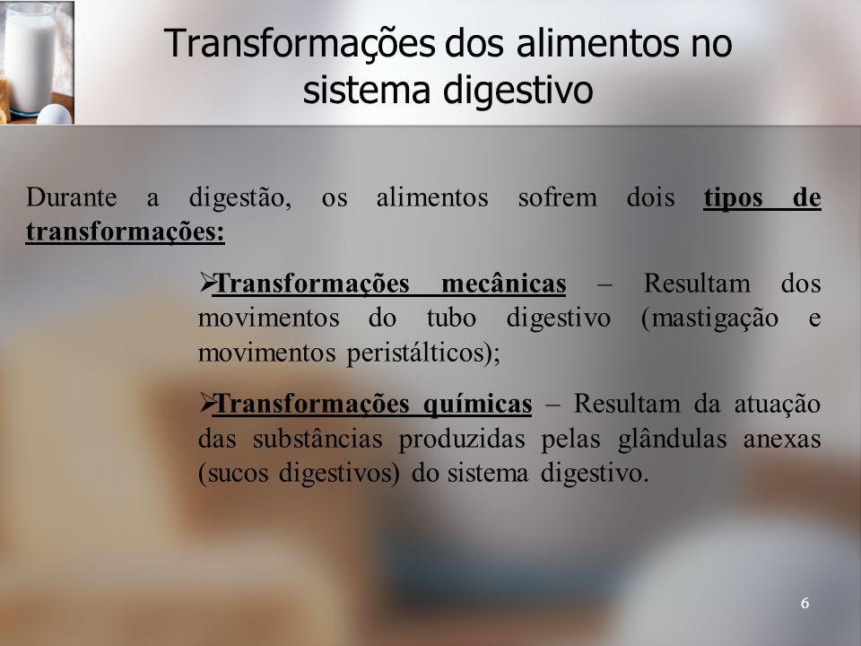 6 Transformações dos alimentos no sistema digestivo Durante a digestão, os alimentos sofrem dois tipos de transformações: Transformações mecânicas – R