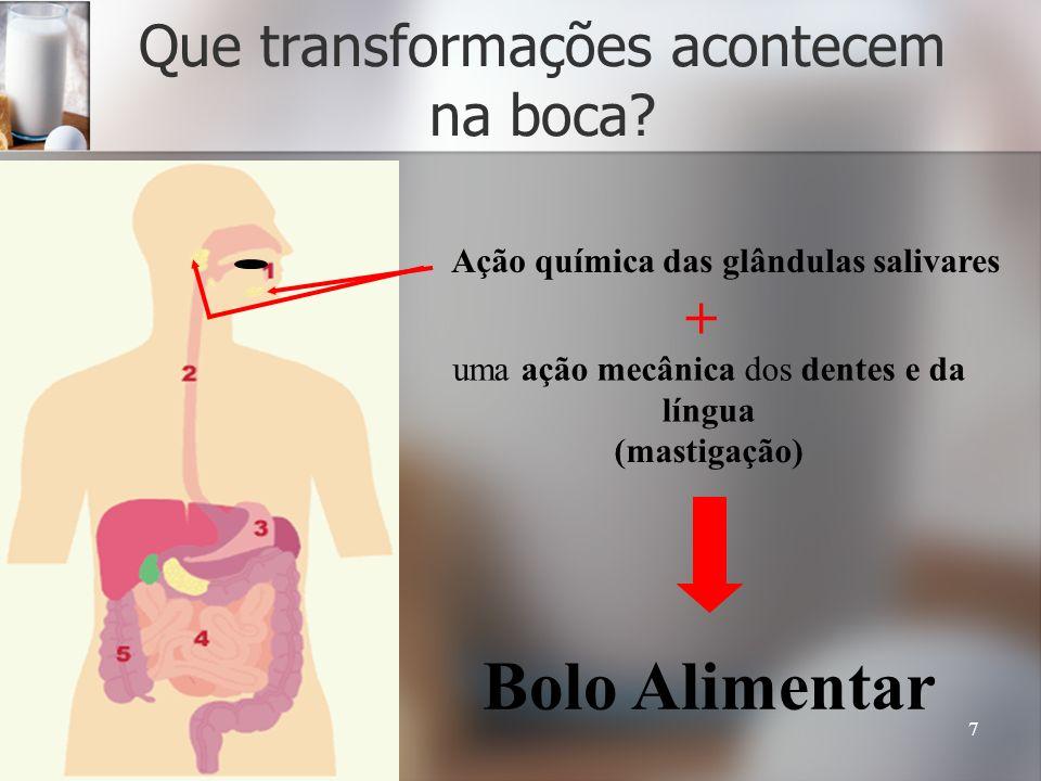 7 Que transformações acontecem na boca? Ação química das glândulas salivares + uma ação mecânica dos dentes e da língua (mastigação) Bolo Alimentar