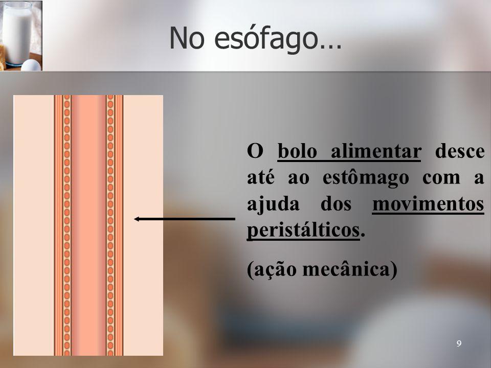 9 No esófago… O bolo alimentar desce até ao estômago com a ajuda dos movimentos peristálticos. (ação mecânica)