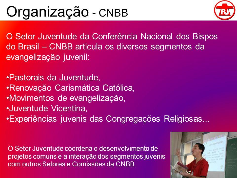 Organização - CNBB O Setor Juventude da Conferência Nacional dos Bispos do Brasil – CNBB articula os diversos segmentos da evangelização juvenil: Past