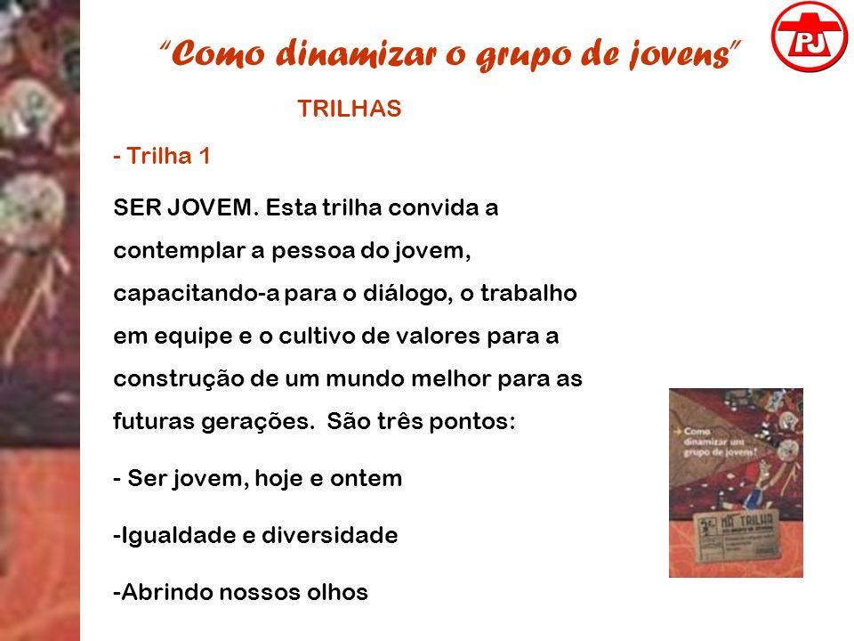 Como dinamizar o grupo de jovens TRILHAS - Trilha 1 SER JOVEM. Esta trilha convida a contemplar a pessoa do jovem, capacitando-a para o diálogo, o tra
