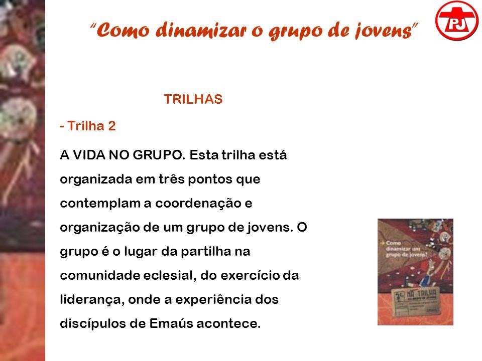 Como dinamizar o grupo de jovens TRILHAS - Trilha 2 A VIDA NO GRUPO. Esta trilha está organizada em três pontos que contemplam a coordenação e organiz