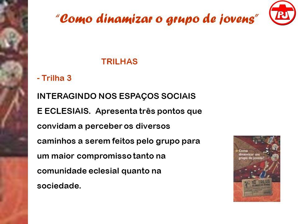 Como dinamizar o grupo de jovens TRILHAS - Trilha 3 INTERAGINDO NOS ESPAÇOS SOCIAIS E ECLESIAIS. Apresenta três pontos que convidam a perceber os dive