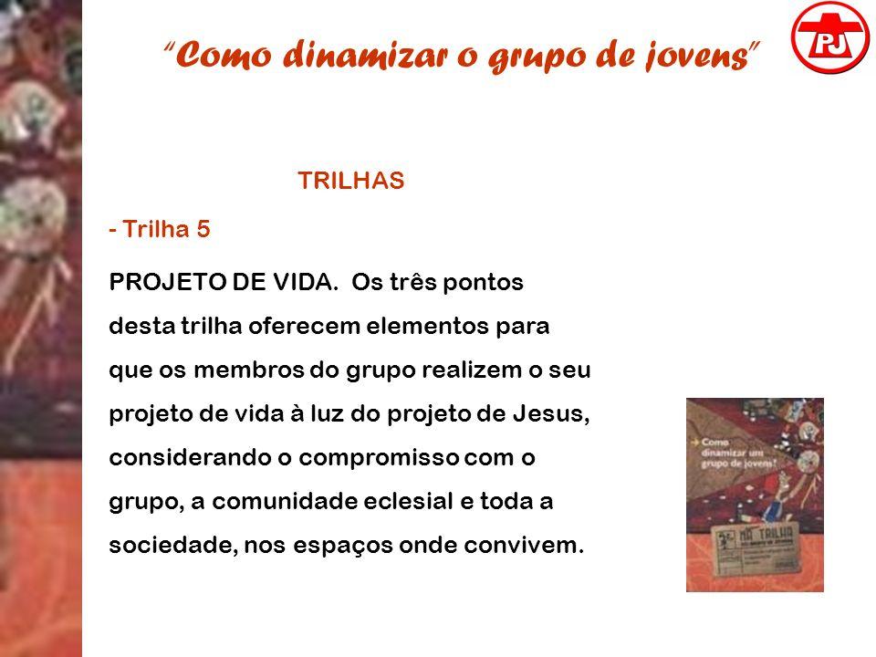 Como dinamizar o grupo de jovens TRILHAS - Trilha 5 PROJETO DE VIDA. Os três pontos desta trilha oferecem elementos para que os membros do grupo reali