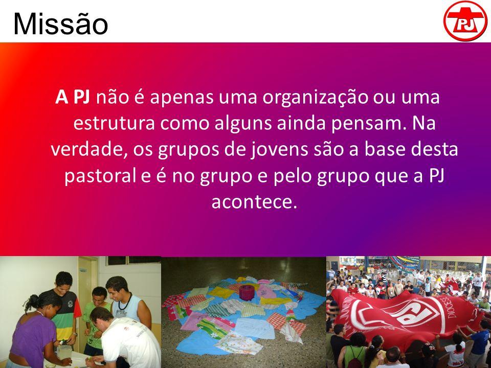 Missão A PJ não é apenas uma organização ou uma estrutura como alguns ainda pensam. Na verdade, os grupos de jovens são a base desta pastoral e é no g
