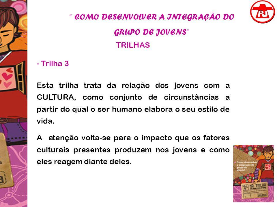 COMO DESENVOLVER A INTEGRAÇÃO DO GRUPO DE JOVENS TRILHAS - Trilha 3 Esta trilha trata da relação dos jovens com a CULTURA, como conjunto de circunstân