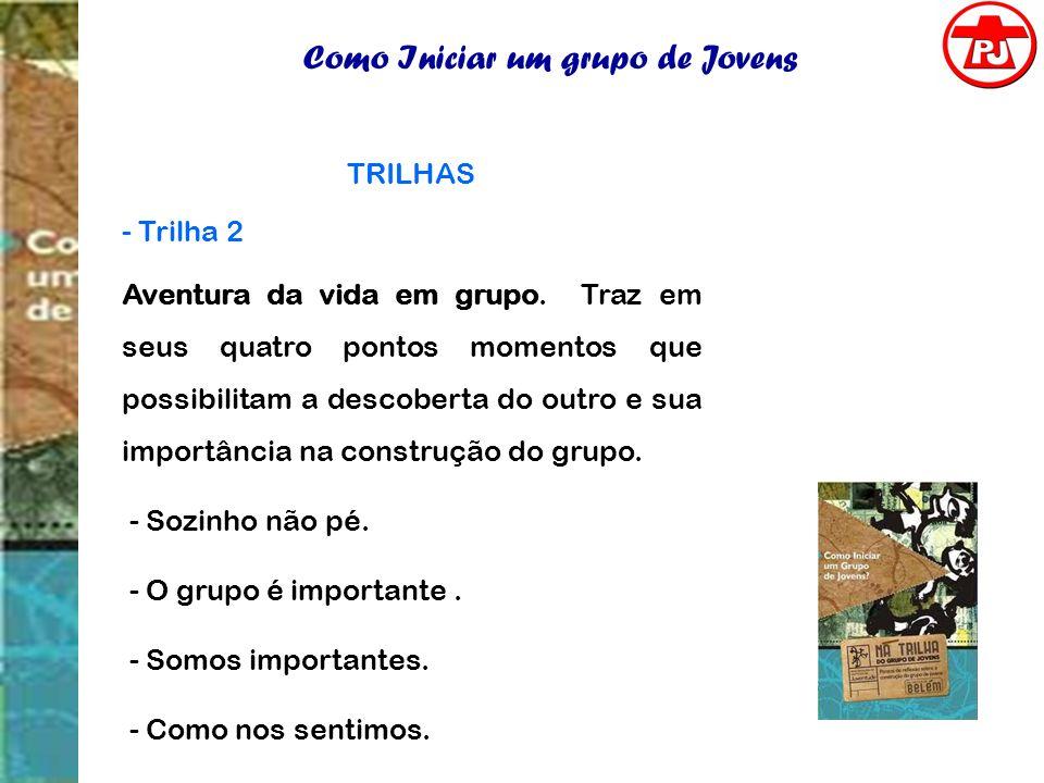 Como Iniciar um grupo de Jovens TRILHAS - Trilha 2 Aventura da vida em grupo. Traz em seus quatro pontos momentos que possibilitam a descoberta do out