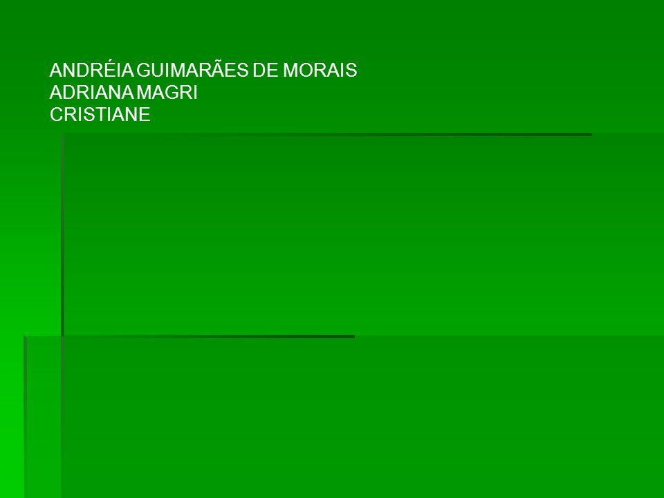 ANDRÉIA GUIMARÃES DE MORAIS ADRIANA MAGRI CRISTIANE