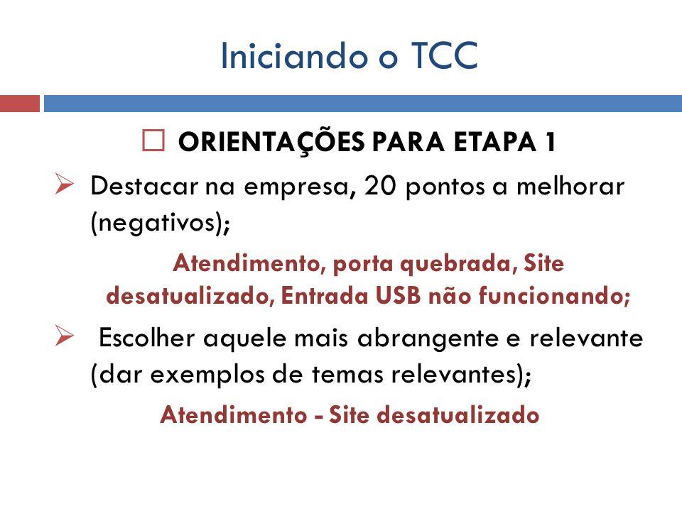 Iniciando o TCC ORIENTAÇÕES PARA ETAPA 1 Destacar na empresa, 20 pontos a melhorar (negativos); Atendimento, porta quebrada, Site desatualizado, Entra
