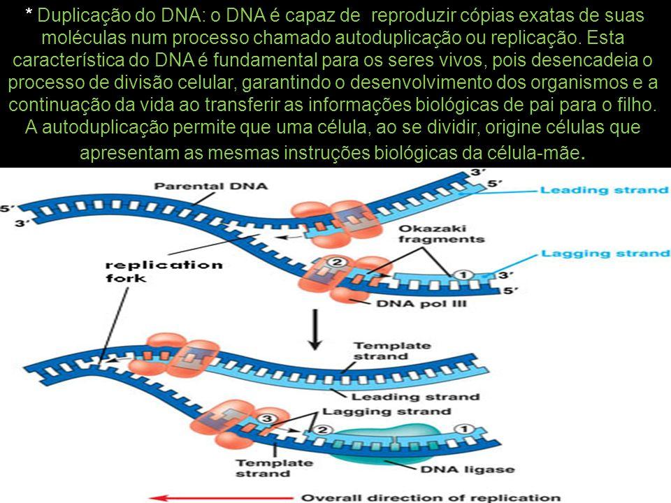 * Duplicação do DNA: o DNA é capaz de reproduzir cópias exatas de suas moléculas num processo chamado autoduplicação ou replicação.