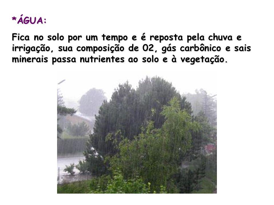 *ÁGUA: Fica no solo por um tempo e é reposta pela chuva e irrigação, sua composição de 02, gás carbônico e sais minerais passa nutrientes ao solo e à