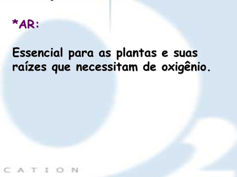 *AR: Essencial para as plantas e suas raízes que necessitam de oxigênio.
