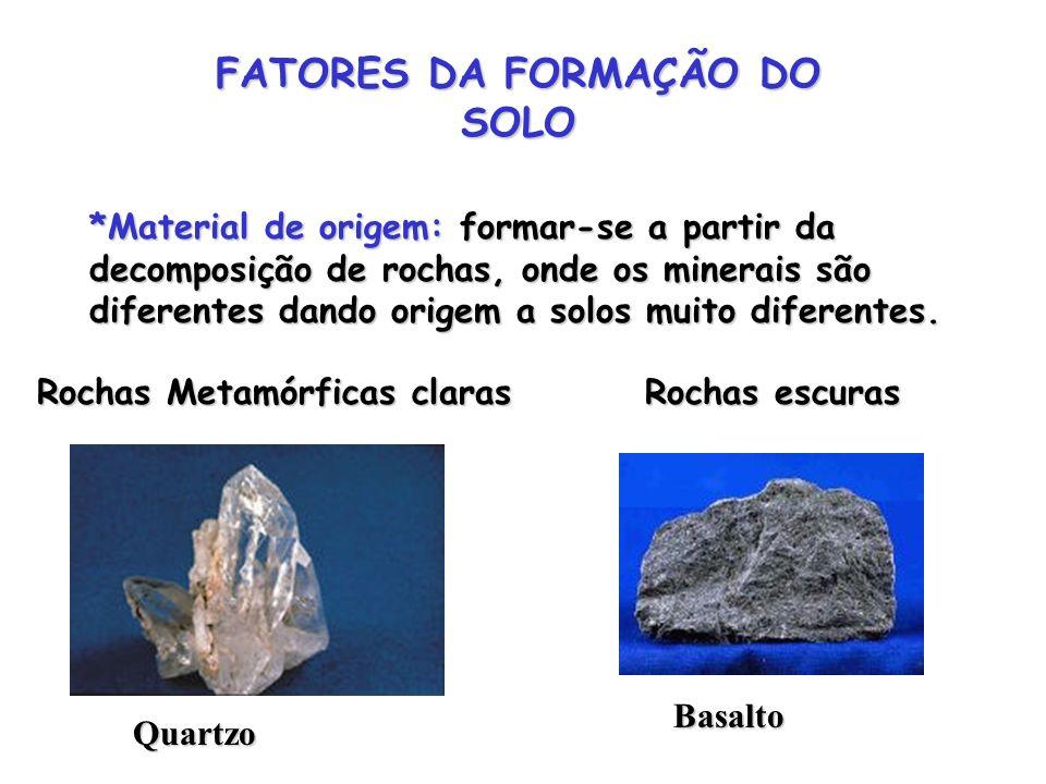 FATORES DA FORMAÇÃO DO SOLO *Material de origem: formar-se a partir da decomposição de rochas, onde os minerais são diferentes dando origem a solos mu