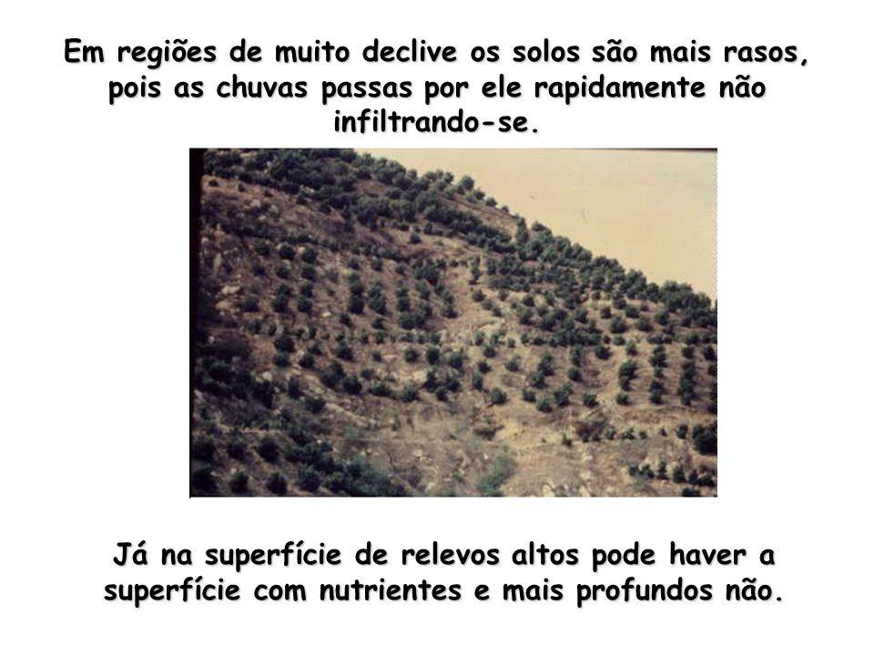Em regiões de muito declive os solos são mais rasos, pois as chuvas passas por ele rapidamente não infiltrando-se. Já na superfície de relevos altos p