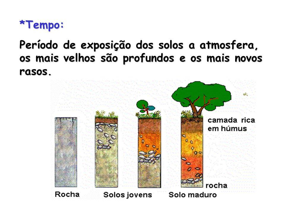 *Tempo: Período de exposição dos solos a atmosfera, os mais velhos são profundos e os mais novos rasos.
