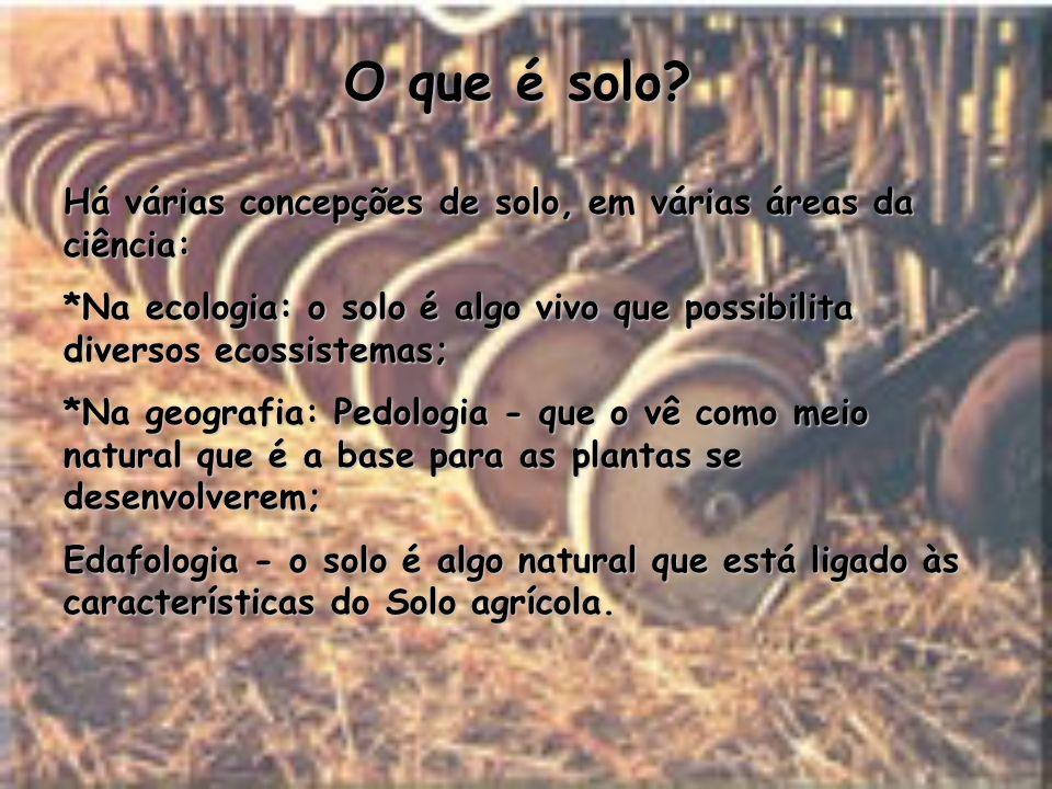 O que é solo? Há várias concepções de solo, em várias áreas da ciência: *Na ecologia: o solo é algo vivo que possibilita diversos ecossistemas; *Na ge