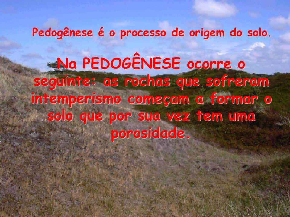 Na PEDOGÊNESE ocorre o seguinte: as rochas que sofreram intemperismo começam a formar o solo que por sua vez tem uma porosidade. Pedogênese é o proces