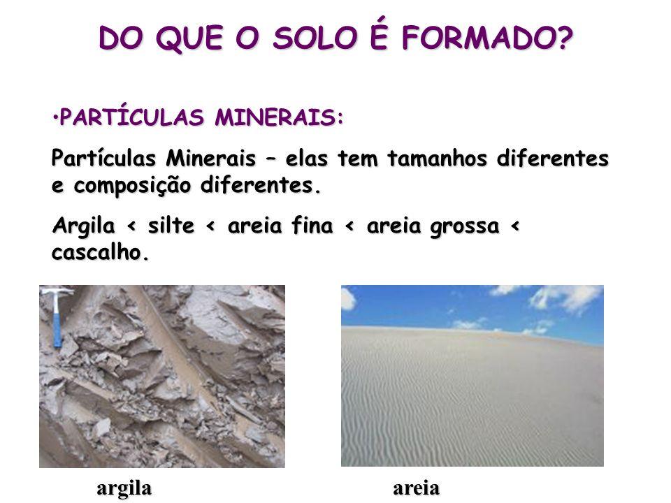 DO QUE O SOLO É FORMADO? PARTÍCULAS MINERAIS:PARTÍCULAS MINERAIS: Partículas Minerais – elas tem tamanhos diferentes e composição diferentes. Argila <