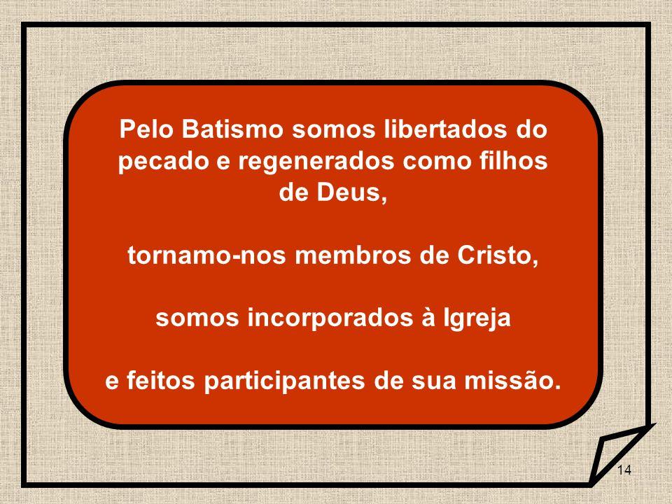 14 Pelo Batismo somos libertados do pecado e regenerados como filhos de Deus, tornamo-nos membros de Cristo, somos incorporados à Igreja e feitos part