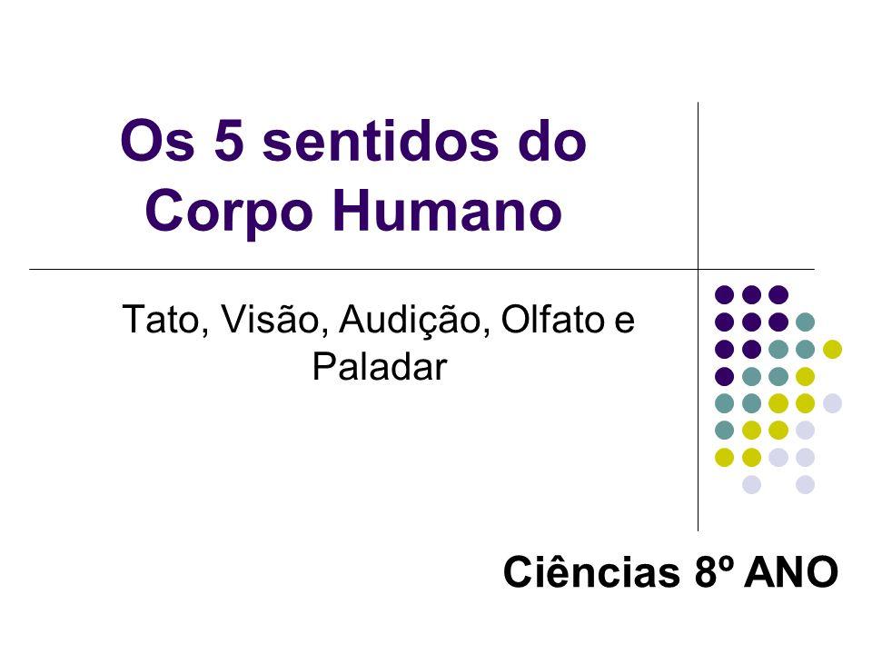 Os 5 sentidos do Corpo Humano Tato, Visão, Audição, Olfato e Paladar Ciências 8º ANO