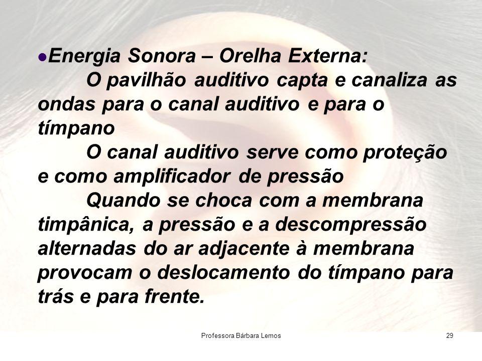 Professora Bárbara Lemos29 Energia Sonora – Orelha Externa: O pavilhão auditivo capta e canaliza as ondas para o canal auditivo e para o tímpano O can
