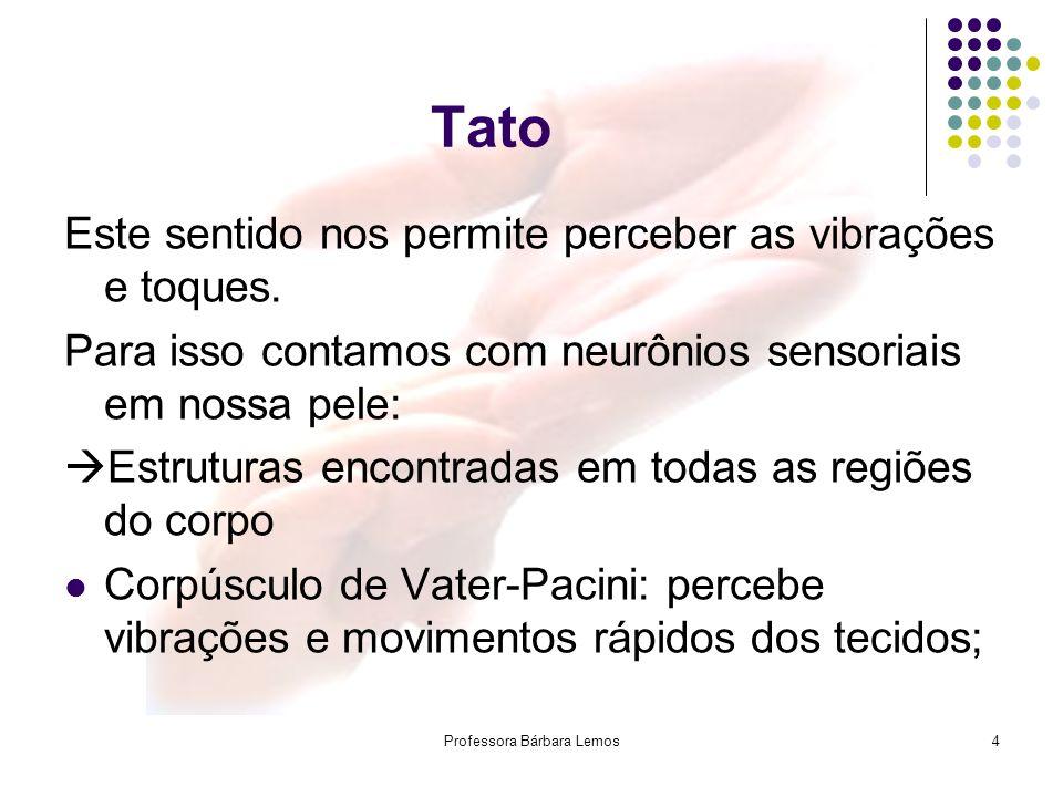 4 Tato Este sentido nos permite perceber as vibrações e toques. Para isso contamos com neurônios sensoriais em nossa pele: Estruturas encontradas em t