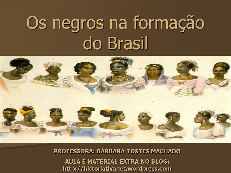Os negros na formação do Brasil PROFESSORA: BÁRBARA TOSTES MACHADO AULA E MATERIAL EXTRA NO BLOG: http://historiativanet.wordpress.com
