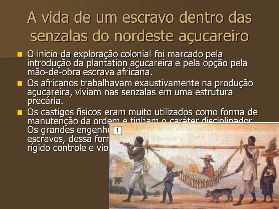 A vida de um escravo dentro das senzalas do nordeste açucareiro O inicio da exploração colonial foi marcado pela introdução da plantation açucareira e