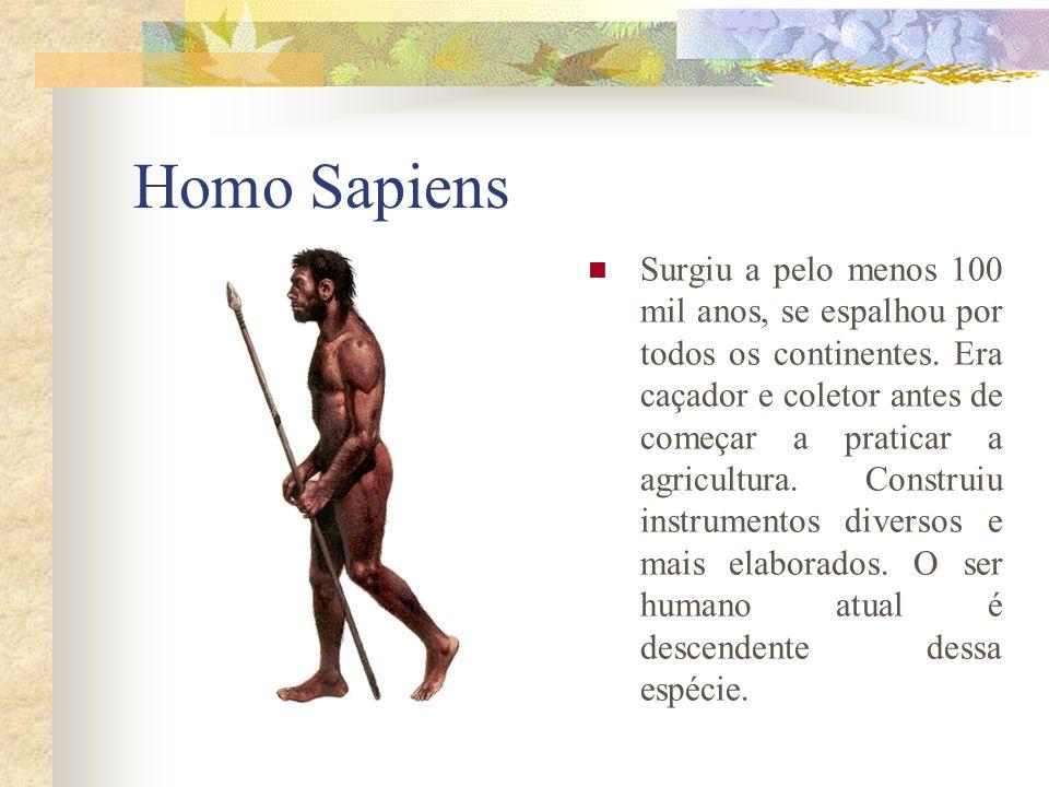 Homo Sapiens Surgiu a pelo menos 100 mil anos, se espalhou por todos os continentes. Era caçador e coletor antes de começar a praticar a agricultura.