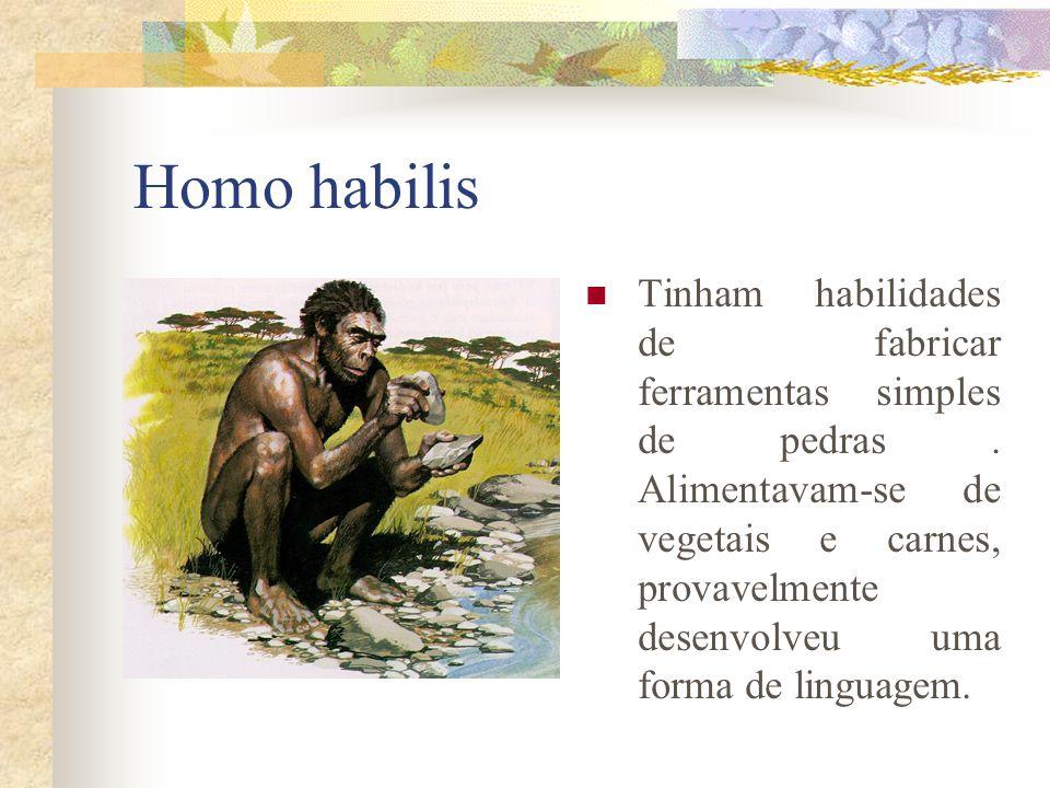 Homo habilis Tinham habilidades de fabricar ferramentas simples de pedras. Alimentavam-se de vegetais e carnes, provavelmente desenvolveu uma forma de
