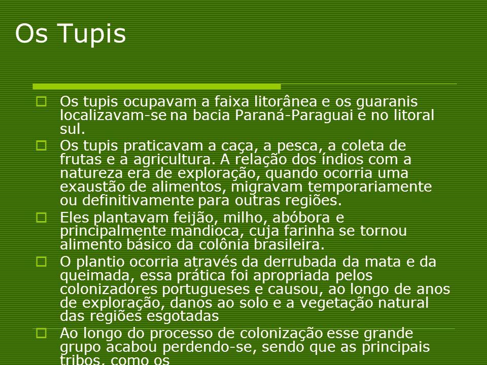 Os Tupis Os tupis ocupavam a faixa litorânea e os guaranis localizavam-se na bacia Paraná-Paraguai e no litoral sul. Os tupis praticavam a caça, a pes