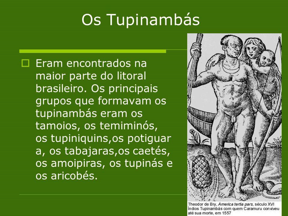 Os Tupinambás Eram encontrados na maior parte do litoral brasileiro. Os principais grupos que formavam os tupinambás eram os tamoios, os temiminós, os