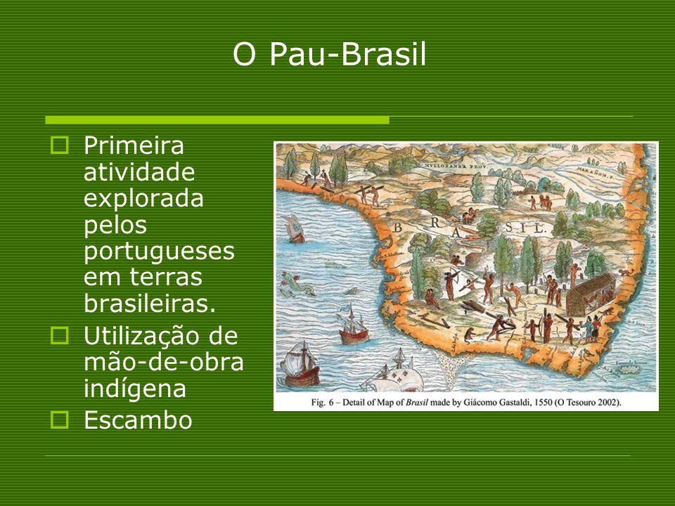 O Pau-Brasil Primeira atividade explorada pelos portugueses em terras brasileiras. Utilização de mão-de-obra indígena Escambo