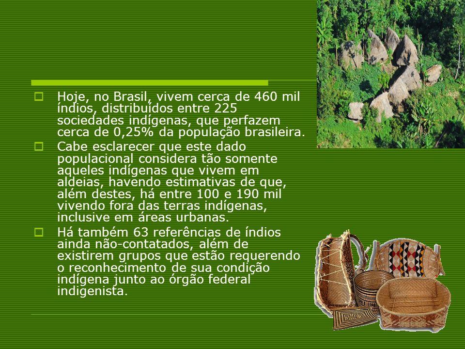 Hoje, no Brasil, vivem cerca de 460 mil índios, distribuídos entre 225 sociedades indígenas, que perfazem cerca de 0,25% da população brasileira. Cabe