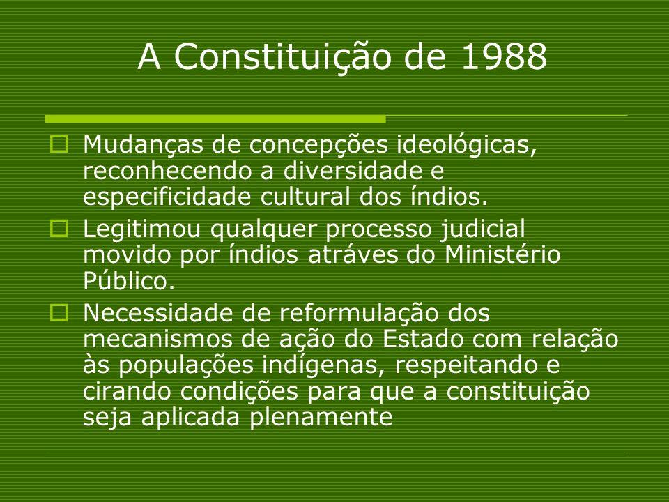 A Constituição de 1988 Mudanças de concepções ideológicas, reconhecendo a diversidade e especificidade cultural dos índios. Legitimou qualquer process
