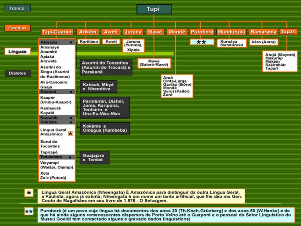 Confederação dos Tamoios (1556/1567) Foi um levante dos Tamoios contra a escravização indígena e a violência implantada pelo colonizador.
