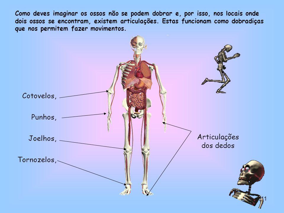 11 Cotovelos, Punhos, Joelhos, Tornozelos, Como deves imaginar os ossos não se podem dobrar e, por isso, nos locais onde dois ossos se encontram, exis