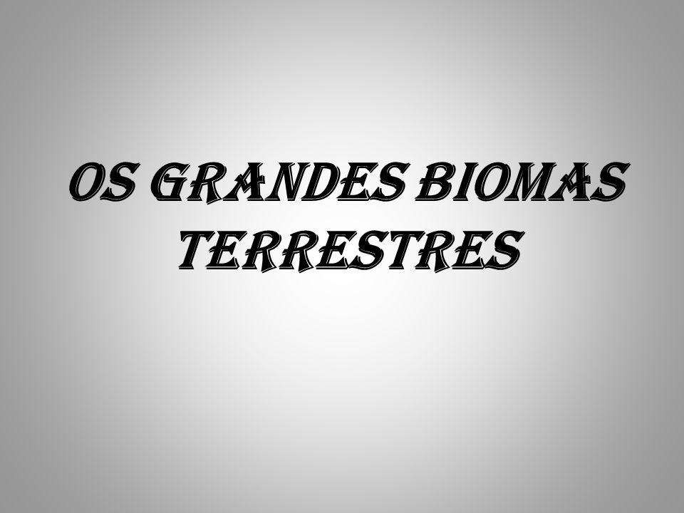 Bioma: Uma comunidade de plantas e animais, com formas de vida e condições ambientais semelhantes.