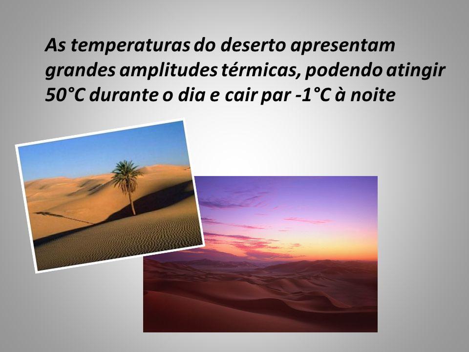 As temperaturas do deserto apresentam grandes amplitudes térmicas, podendo atingir 50°C durante o dia e cair par -1°C à noite