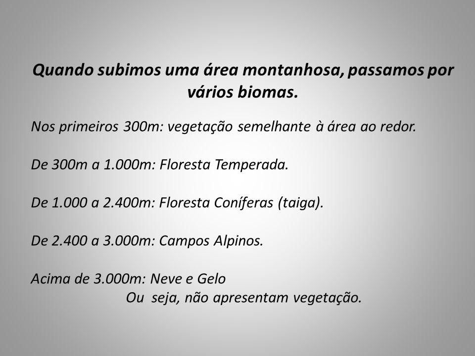Quando subimos uma área montanhosa, passamos por vários biomas. Nos primeiros 300m: vegetação semelhante à área ao redor. De 300m a 1.000m: Floresta T