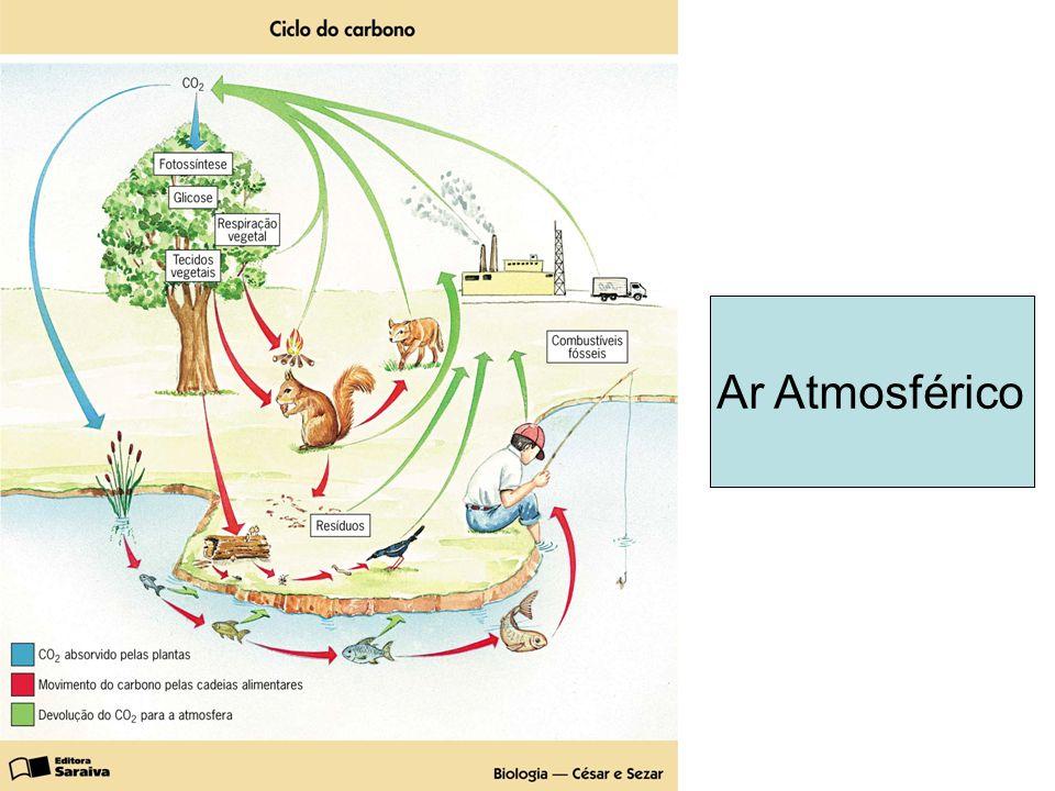 Ar Atmosférico