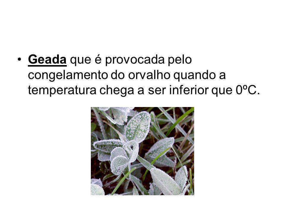 Geada que é provocada pelo congelamento do orvalho quando a temperatura chega a ser inferior que 0ºC.