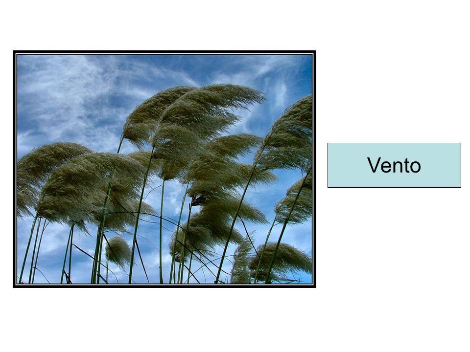 As chuvas podem ser: chuva de convecção, chuva frontais, chuva de relevo ou orográficas Chuva convecção Chuva frontal Chuva Orográfica
