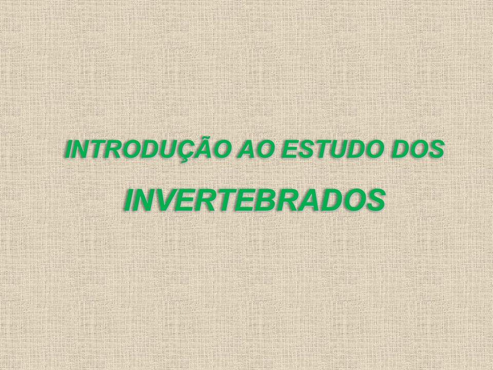 INTRODUÇÃO AO ESTUDO DOS INVERTEBRADOS INVERTEBRADOS