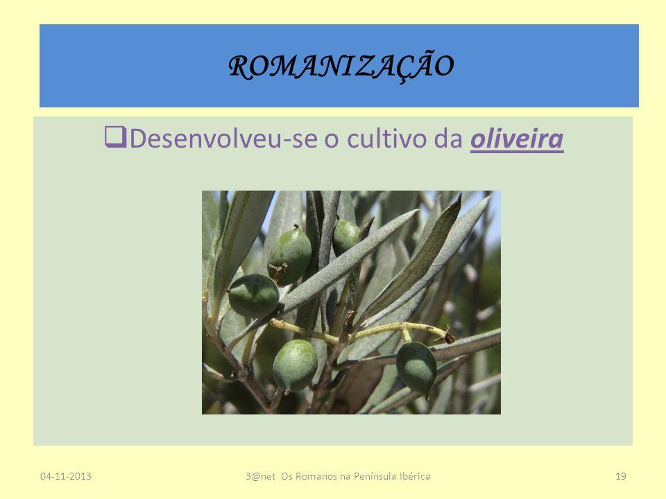 ROMANIZAÇÃO Desenvolveu-se o cultivo da oliveira 04-11-20133@net Os Romanos na Península Ibérica19